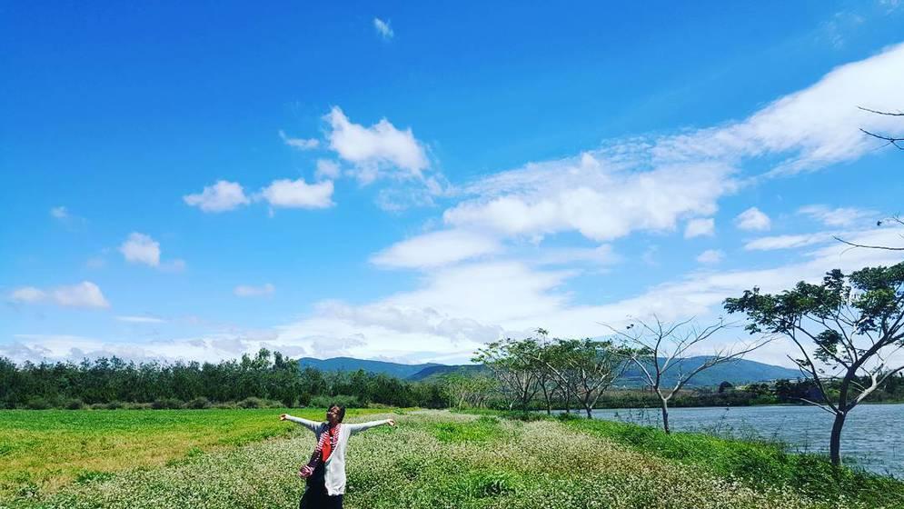 Image result for Cánh đồng hoa tam giác mạch Milk Farm