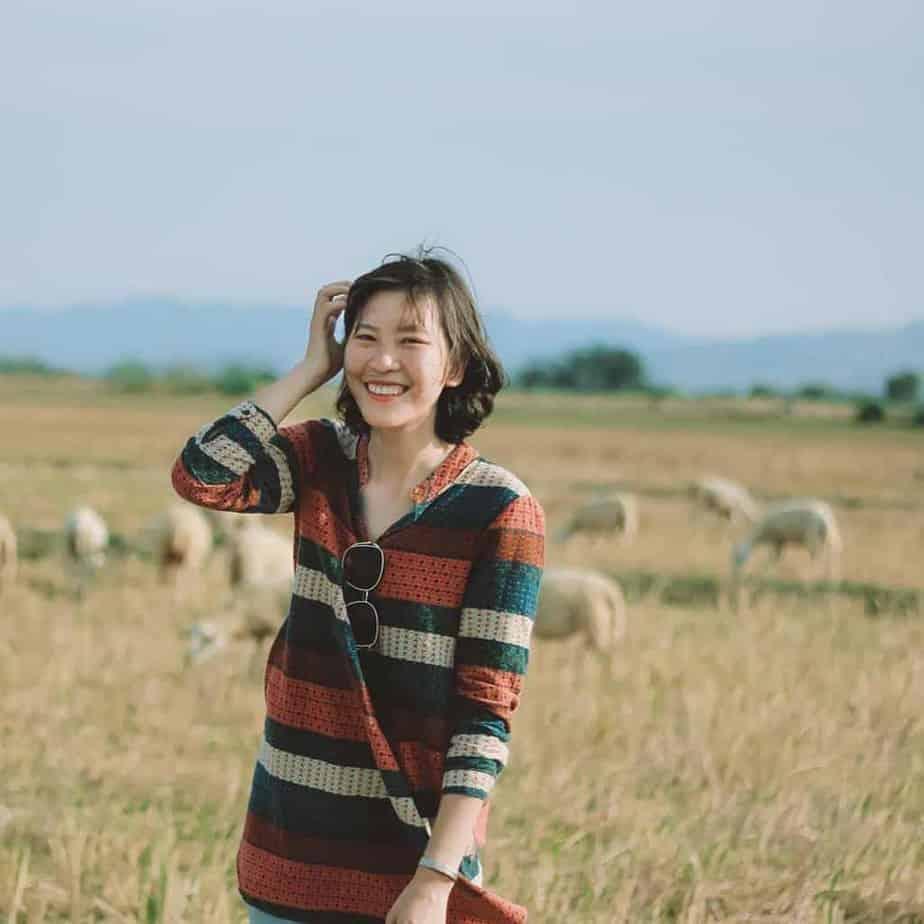 phan rang có gì chơi-Cánh đồng cừu