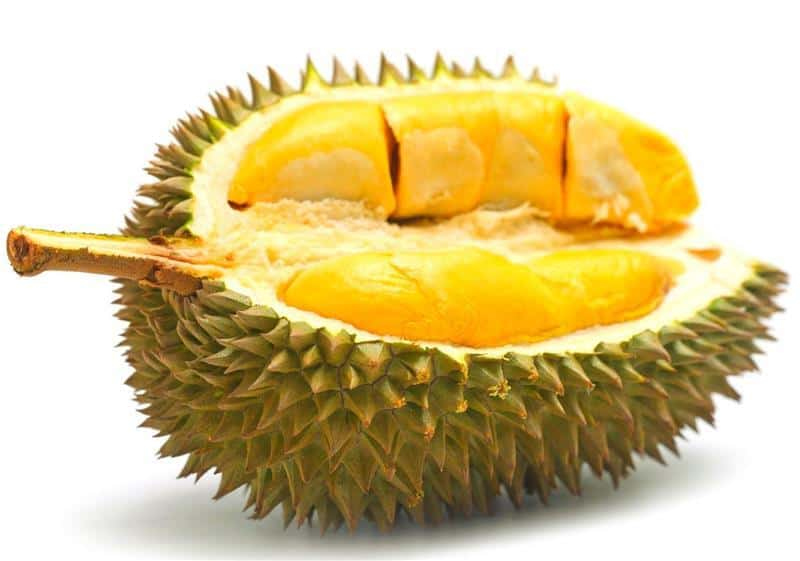 durian-113