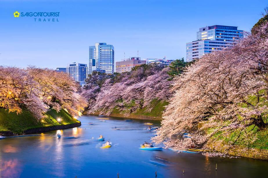 chidorigafuchi-359518463