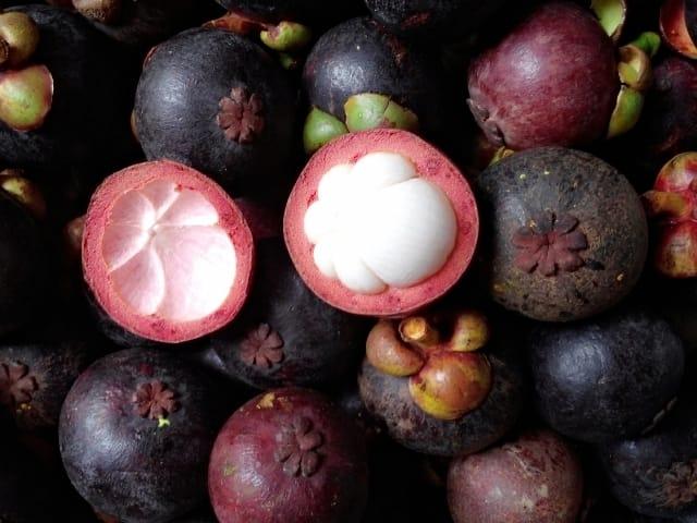 """Măng cụt được coi là trái cây """"vua"""" của miệt vườn Thuận An Bình Dương"""