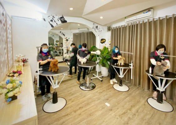 Phòng Grooming tại Azpet Spa