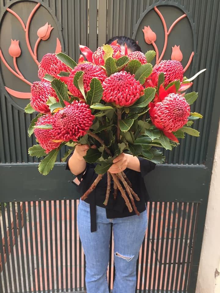 Cửa hàng của Talia không quá ấn tượng nhưng các loại hoa lại vô cùng đa dạng.