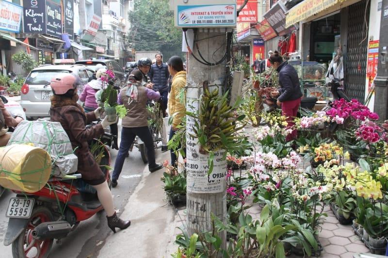 Đường Hoàng Hoa Thám vào ngày Tết