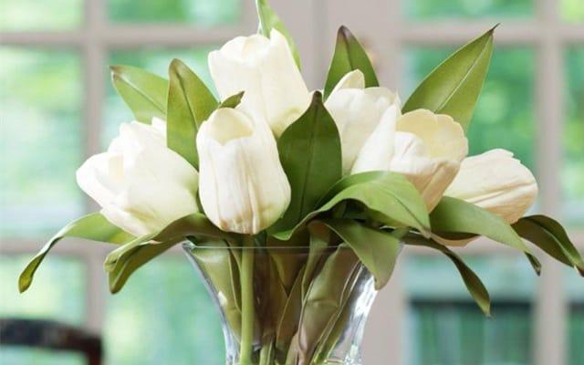 Hoa cắm bình đẹp và sang trọng