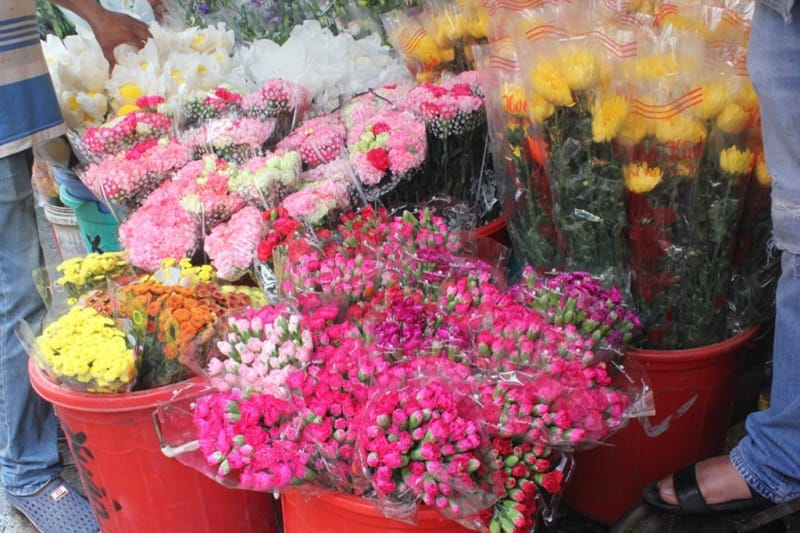 Hoa điển hình ở Mai Dịch